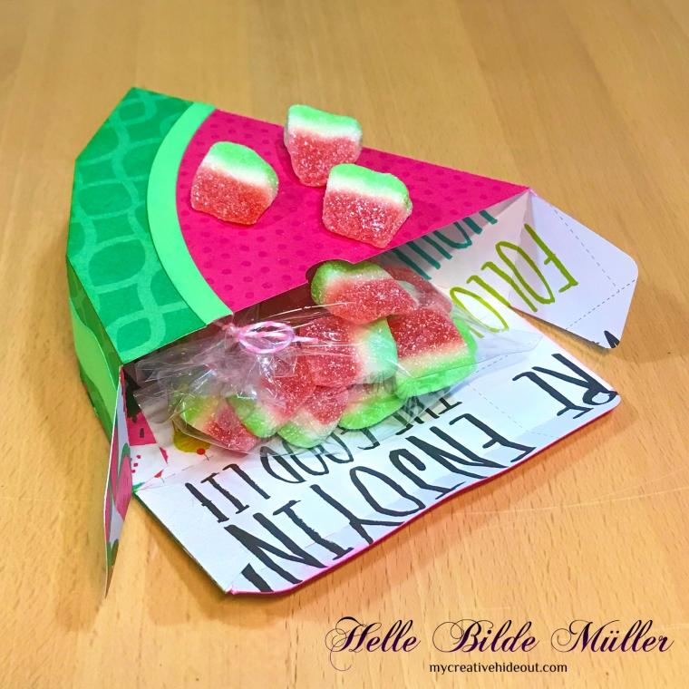 Vandmelon 2